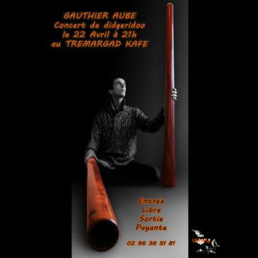 Gauthier Aubé concert de didgeridoo le 22 Avril à 21h